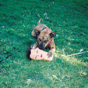 joyce-manor-cody